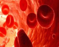 مدت ذخیرهسازی گلبولهای قرمز  و میزان بقا