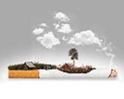 تأثیر مخرب سیگار بر بدن بهزبانساده