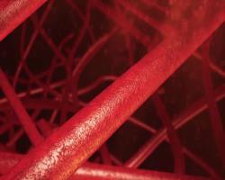 پلیآدنیلاسیـون اینتـرونی از PDGFRα در بنیـاختههای ساکن باعث کاهش فیبروز عضله میشود