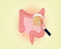 عوارض ناشیاز میکروبهای همزیست بهدلیل عدم مصرف فیبر