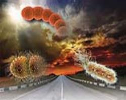 ممانعت از نظارت ضدمیکروبی توسط «طوفانکامل»